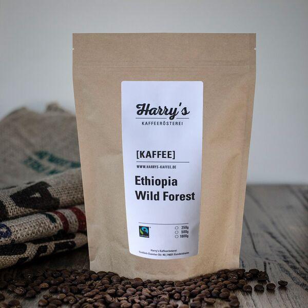 Ethiopia Wild Forest